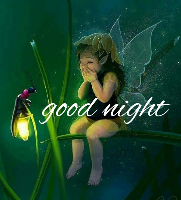 Picture: Fairy Good Night Image