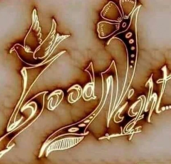Picture: Picture Of Good Night