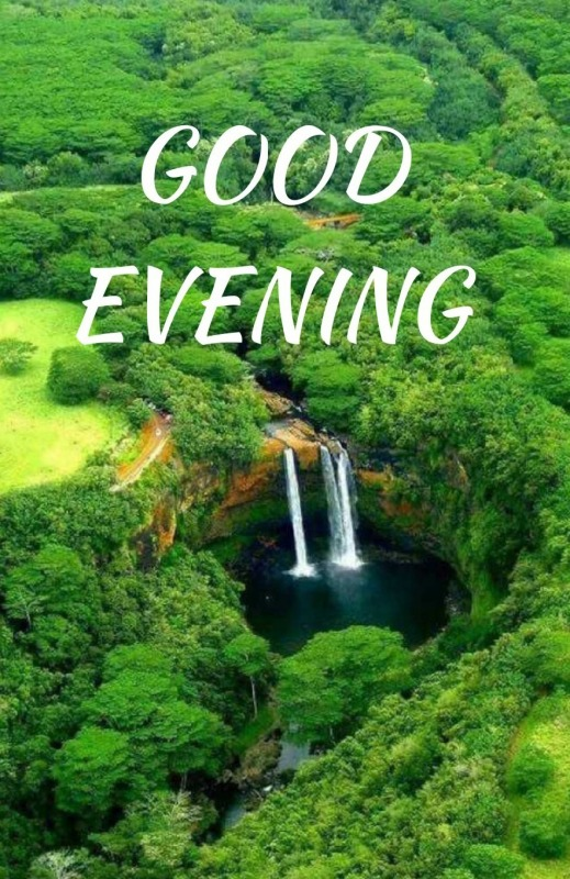 Greenery Good Evening