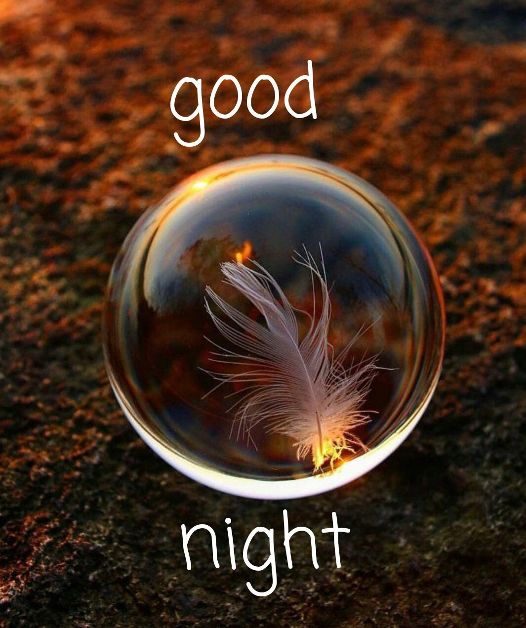 Awesome Good Night