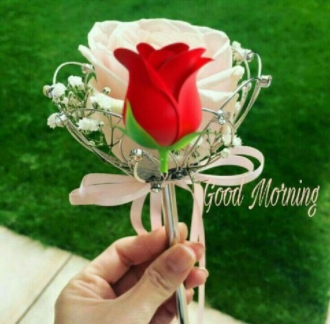 Picture: Good Morning With Rose