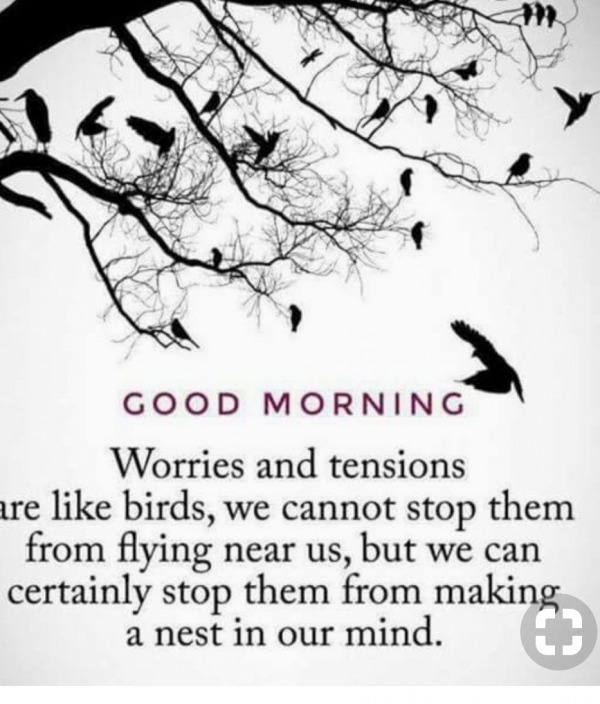 Picture: Worries And Tensions Are Like Bird