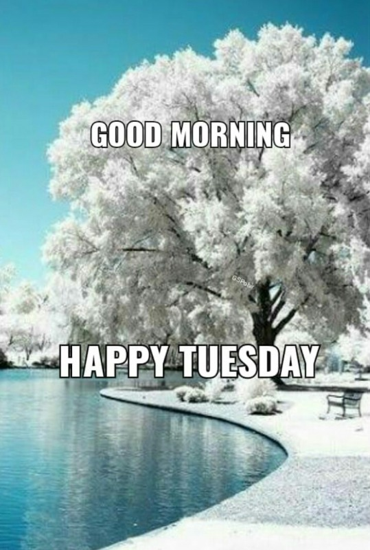 Picture: HAPPY TUESDAY
