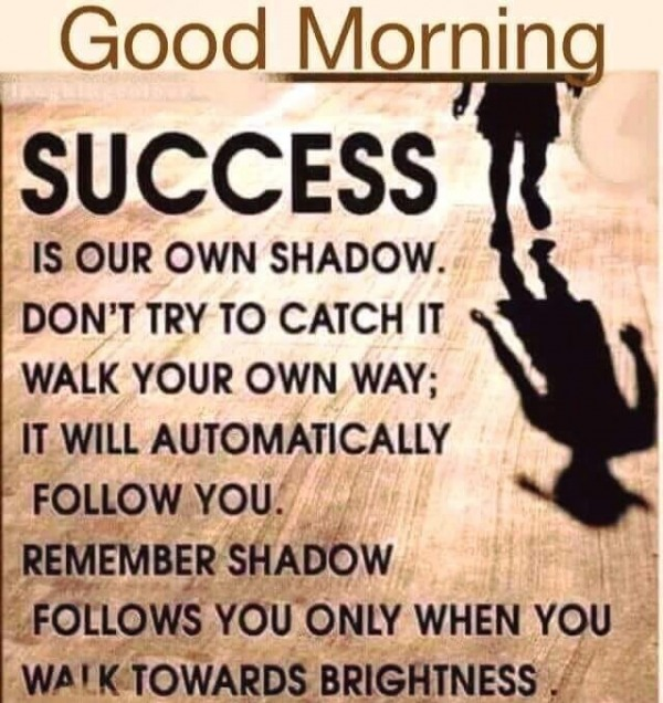 Picture: Success Is Your Own Shadow