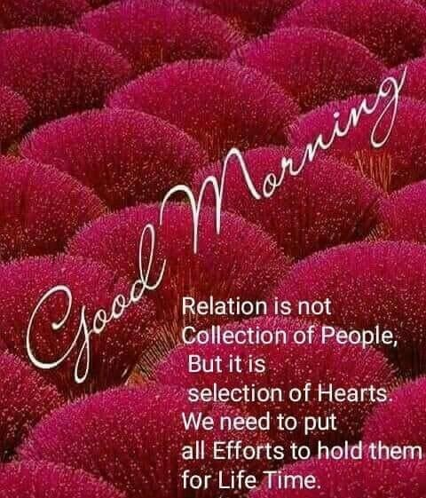 Relation Is Not Collection Of People