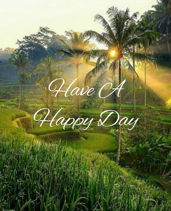 Picture: Have A Happy Day