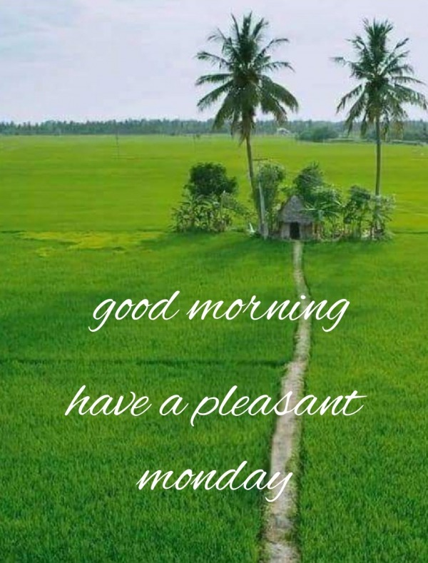 Picture: Good Morning Have A Pleasant Monday