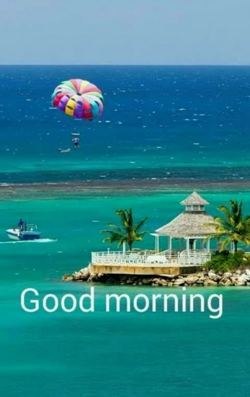 Picture: Good Morning Photo