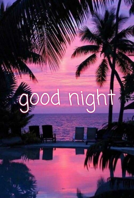 Picture: Beautiful Good Night Pic