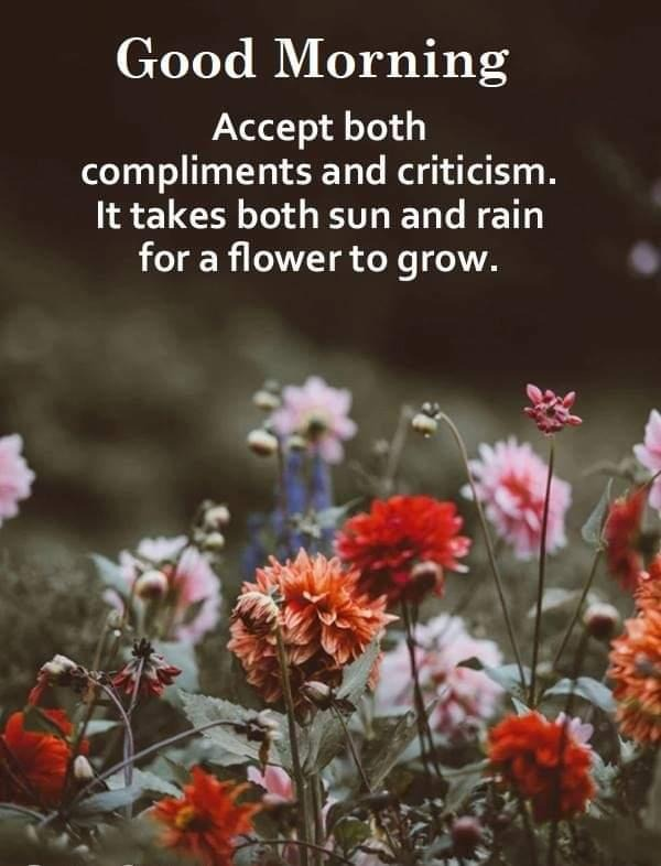 Picture: Accept Both Compliments