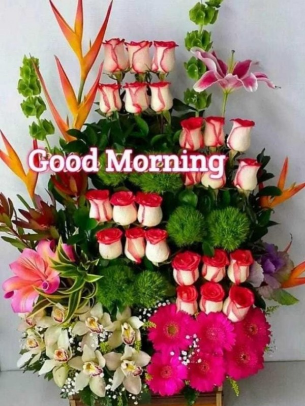 Picture: Good Morning With Bouquet