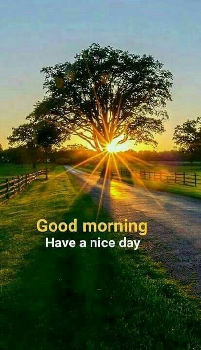 Picture: Have A Nice Day