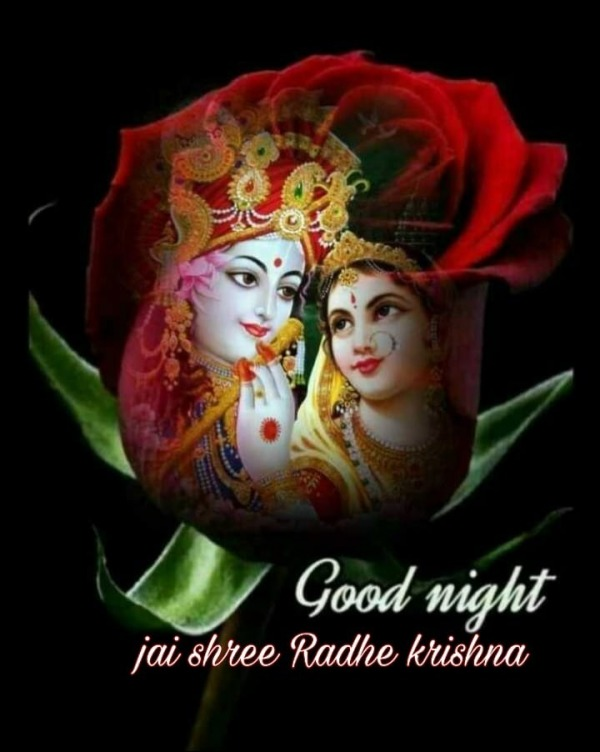 Picture: Jai Shree Radhe Krishna