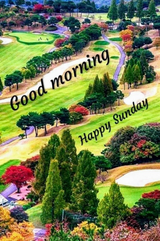 Picture: Good Morning Happy Sunday