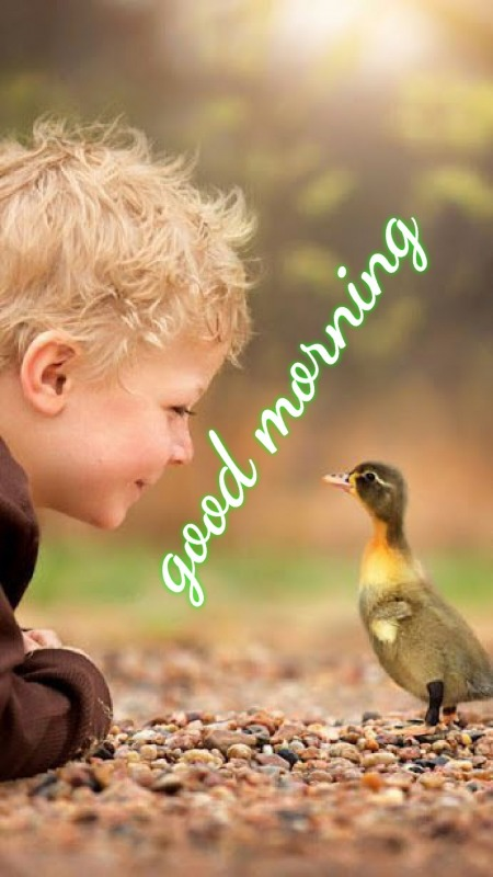 Cute Morning Picture