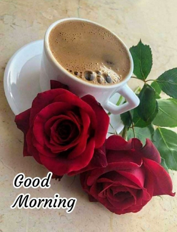 Picture: Good Morning With Roses