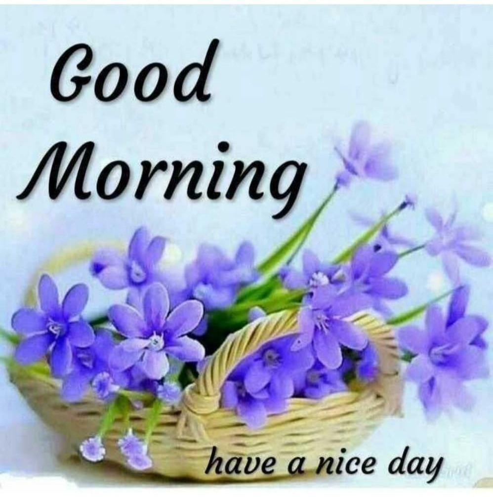 Good Morning Have A Nice Day Desicomments Com