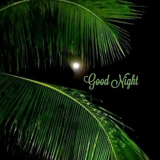 Have A Good Night