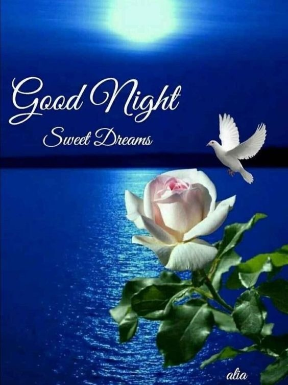 Picture Of Beautiful Good Night