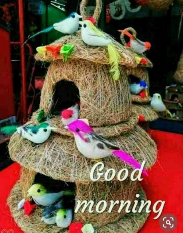 Picture: Lovely Good Morning Picture