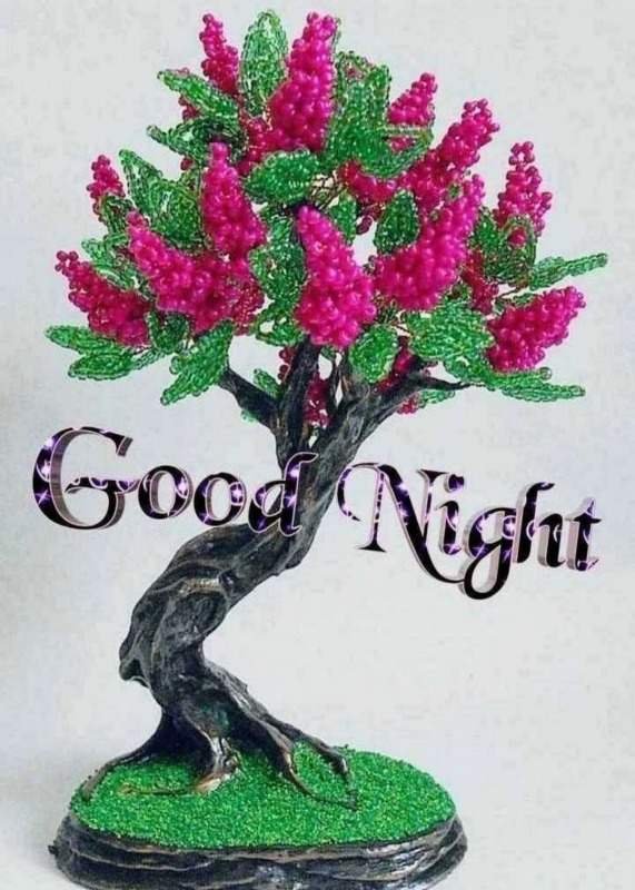 Lovely Good Night Picture