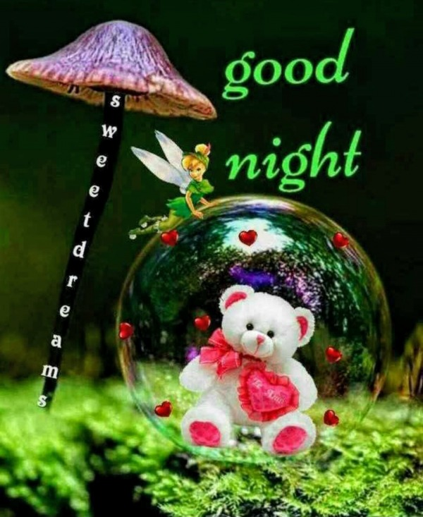 Picture: Good Night Image