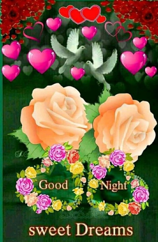 Picture: Good Night Sweet Dreams