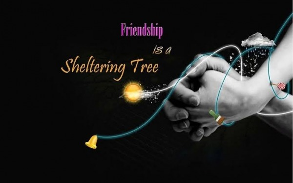 Picture: Friendship Is A Sheltering Tree