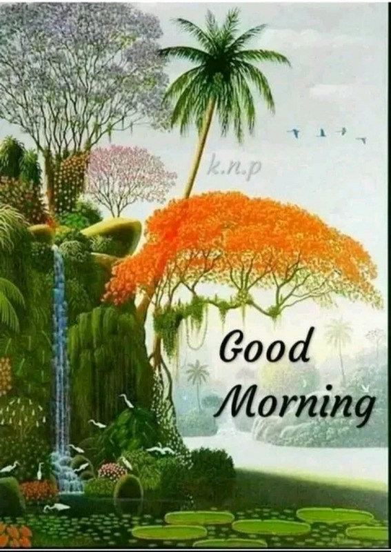 Picture: Beautiful Picture Of Good Morning