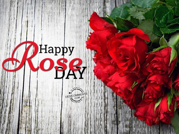 Picture: Wish you a very happy rose day