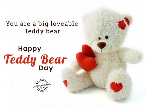 Picture: You are a big loveable teddy bear