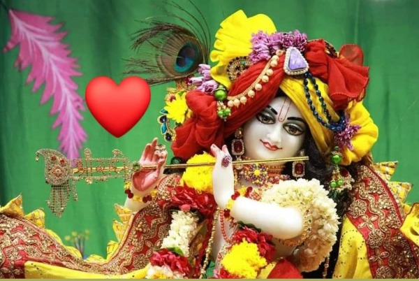 Beautiful Picture Of Shri Krishna