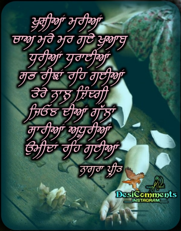 Thought Of Punjabi........Khushiyan Mariyaan