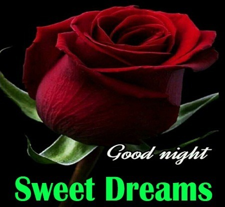 Picture: Very Beautiful Good Night Pic