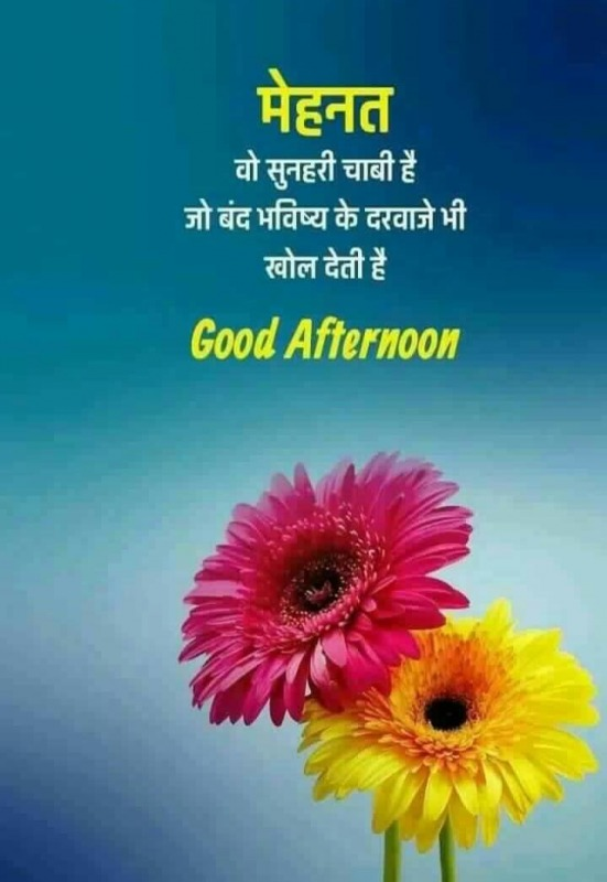 Good Afternoon In Hindi Quote
