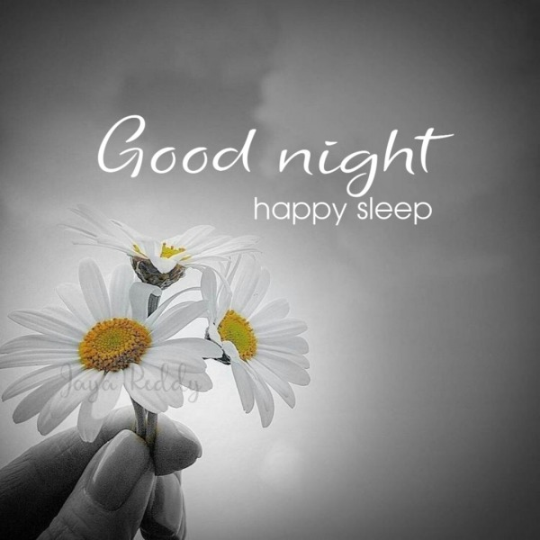 Good Night Have Sleep