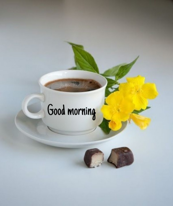 Good Morning Picture