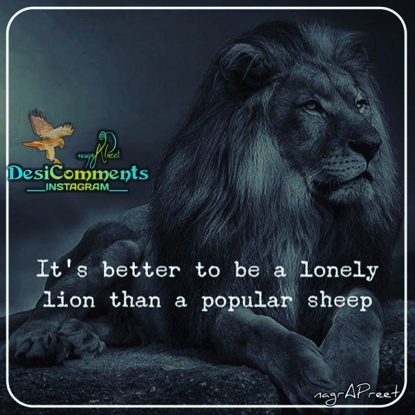 Its Better To Be A Lonely Lion
