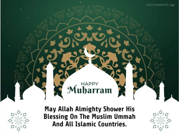 May Allah Almighty Shower