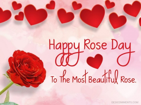 Happy Rose Day To The Most Beautiful Rose.