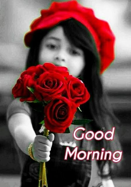 Good Morning With Red Roses