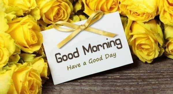 Good Morning With Yellow Roses