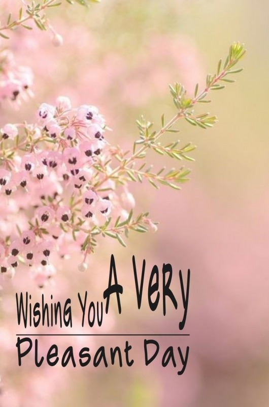 Wishing You A Very Pleasant Day