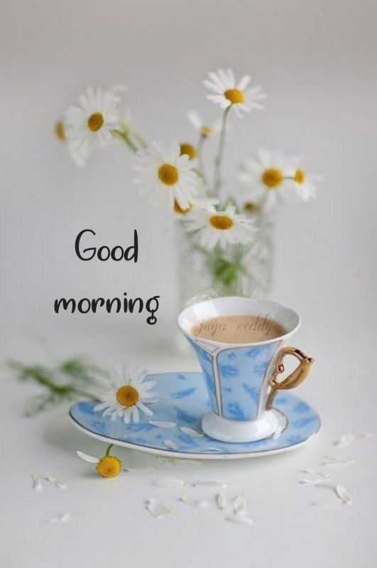Good Morning With Tea