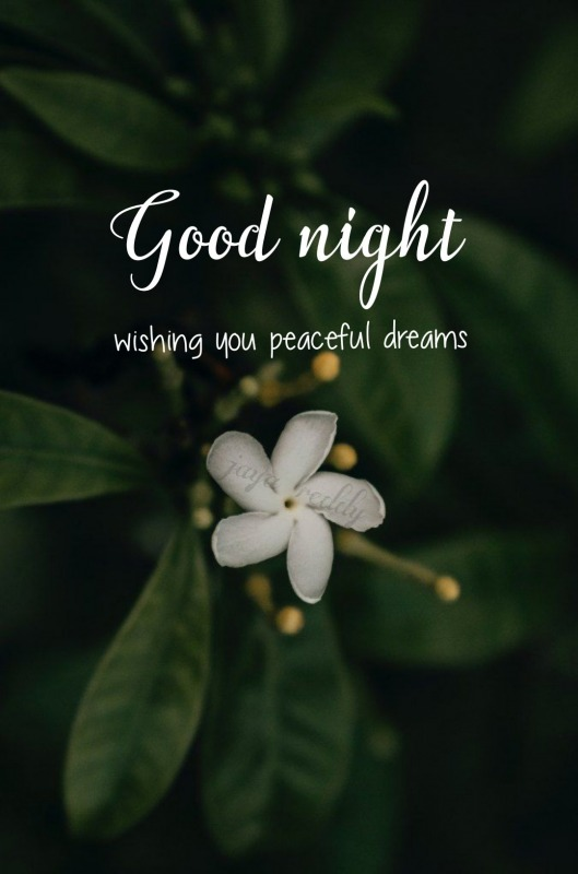 Wishing You Peaceful Dreams