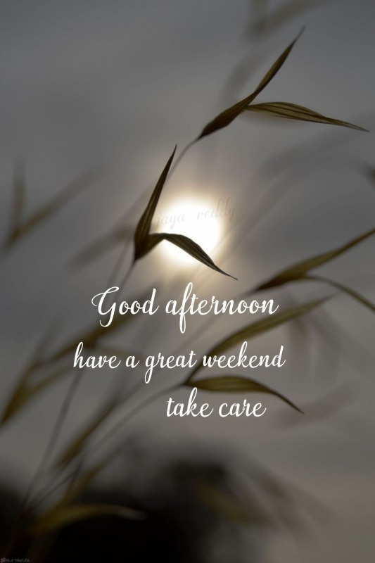 Have A Great Weekend Take Care