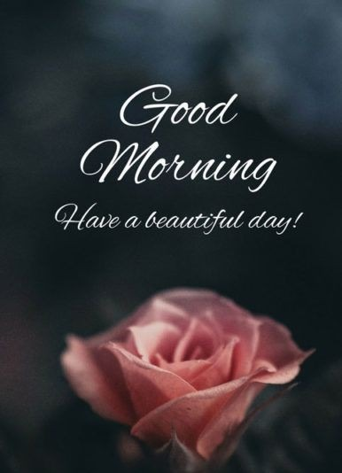 Good Morning, Have a Beautiful Day!
