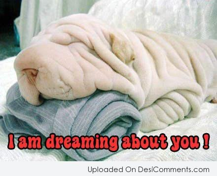 Picture: I Am Dreaming About You