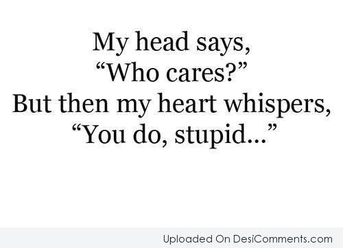 My Head Says Who Cares?