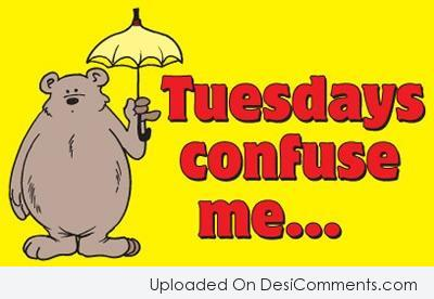 Picture: Tuesdays Confuse Me..